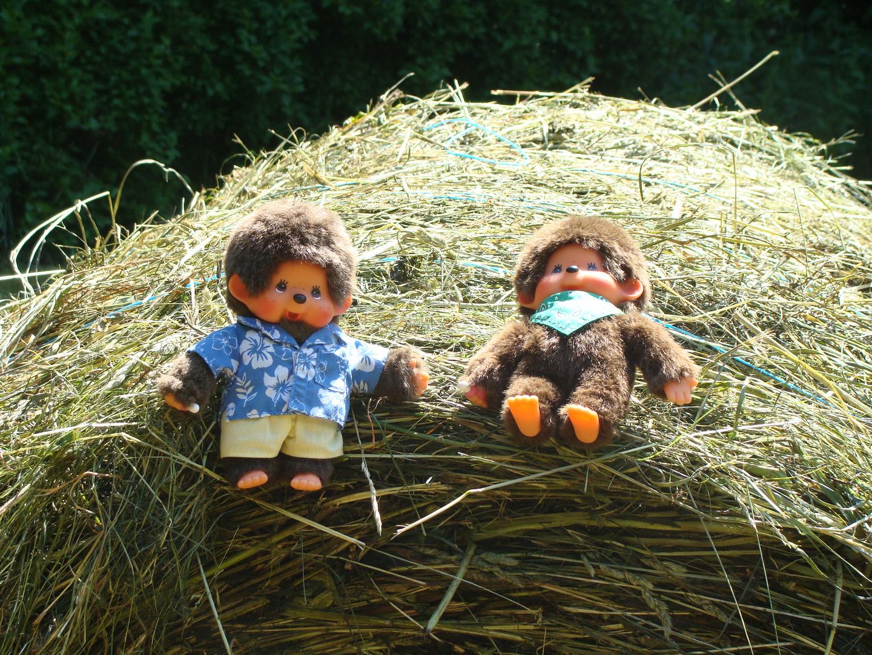 Gustav und Willi