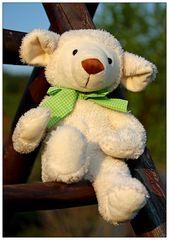 Gute - Laune - Bär