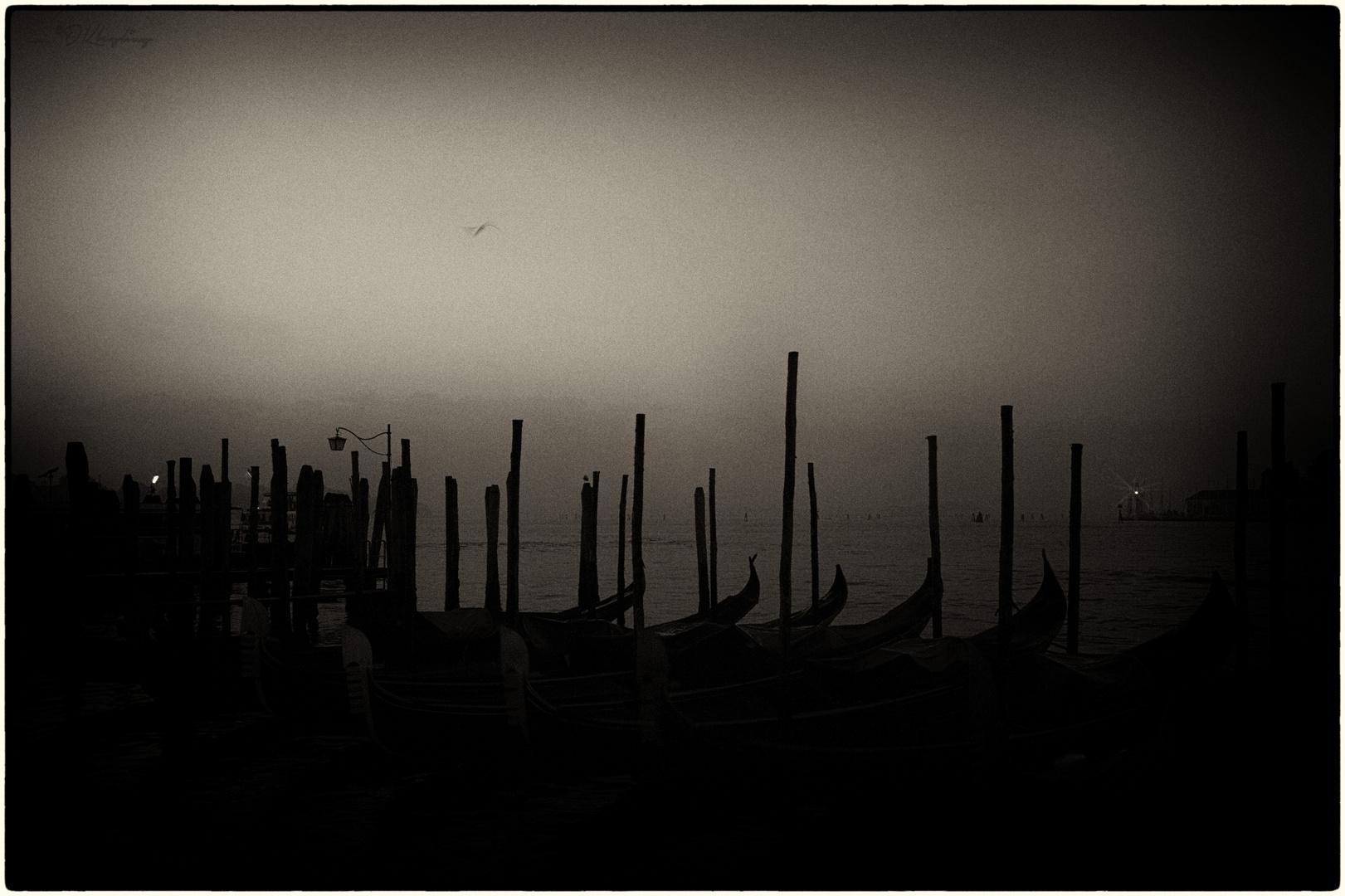 Gute Nacht, Venedig!