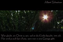 Gute (?) Sprüche - Vol. 7