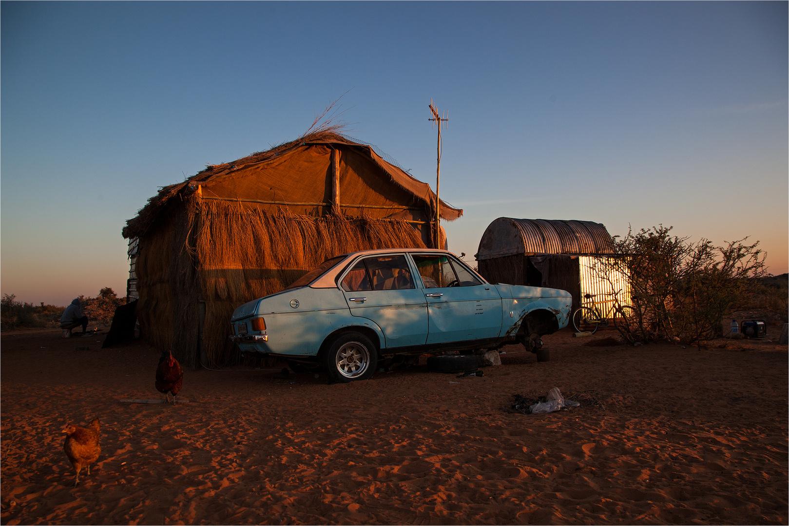 Guten Morgen Afrika Foto Bild Africa Southern