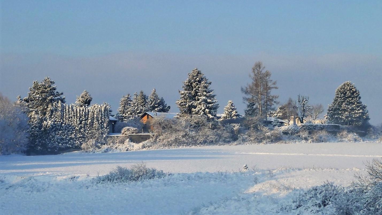 Guten Morgen Im Schnee Foto Bild World Landschaften Winter