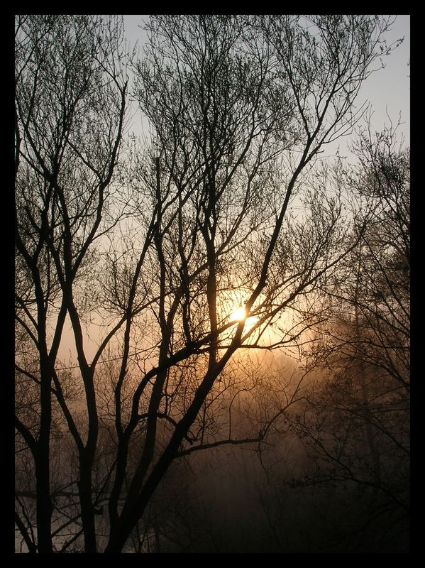 Guten Morgen, liebe Welt