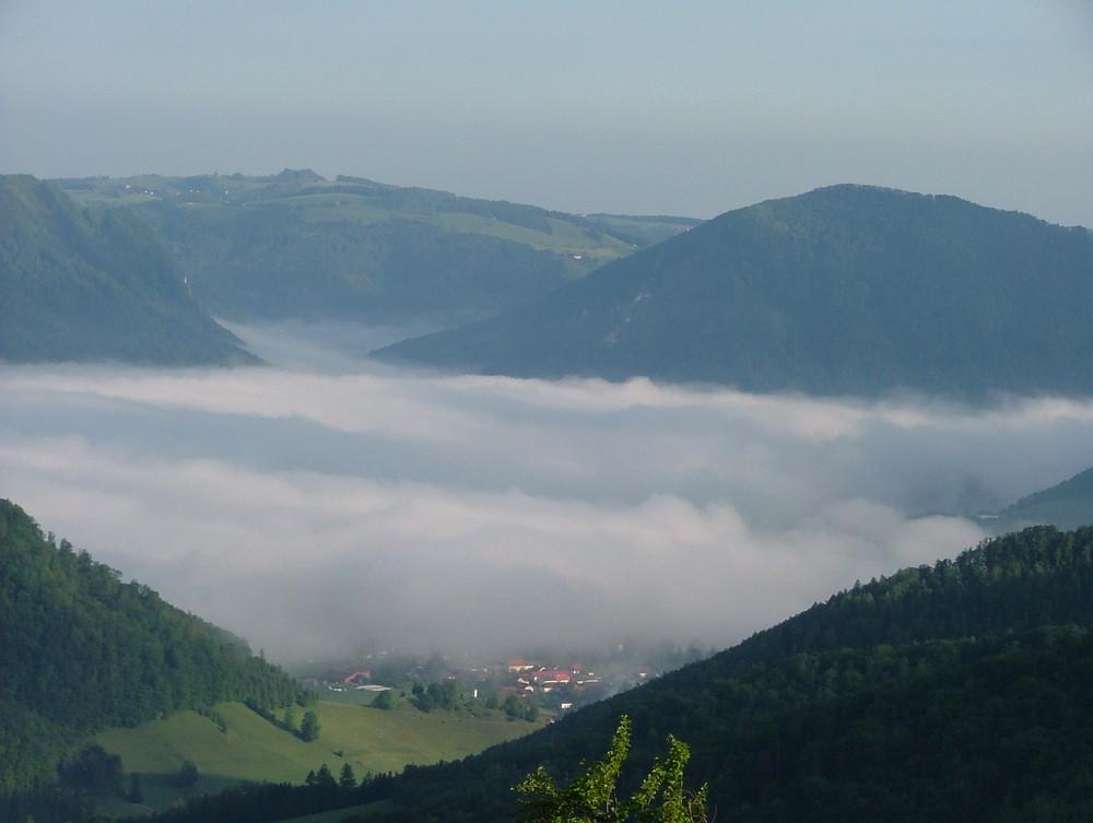 Guten Morgen Österreich