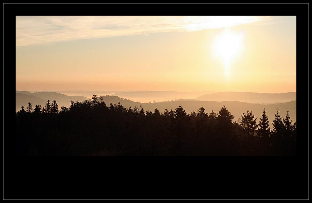Guten Morgen Schwarzwald