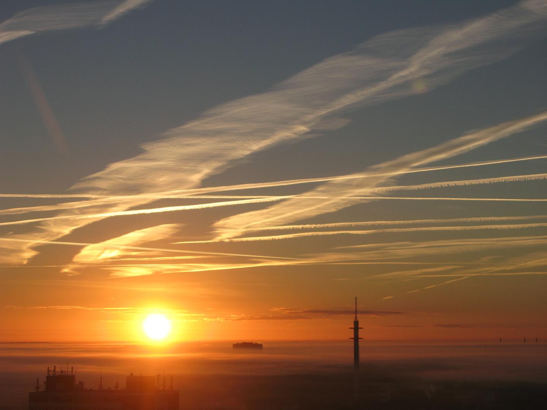 Guten Morgen Sonnenschein ☼