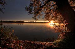 ~ Guten Morgen Sonnenschein II ~