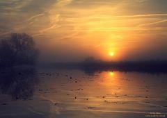 Guten Morgen Traumland