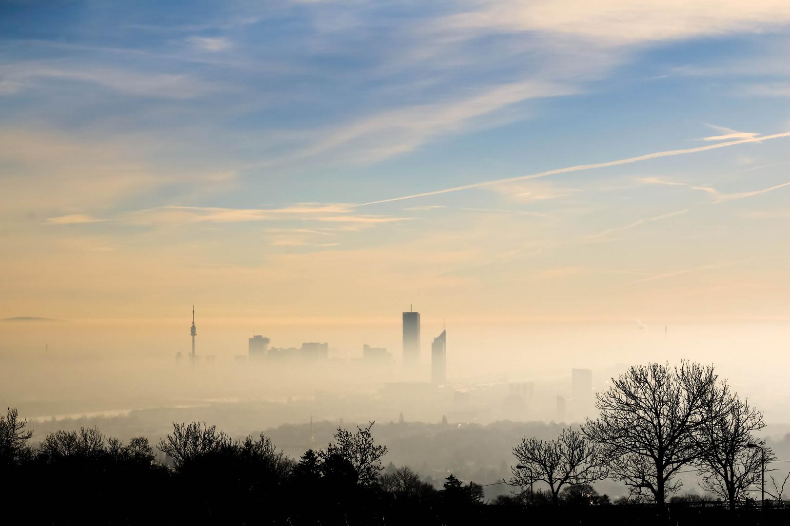 Guten Morgen Wien Foto Bild Architektur