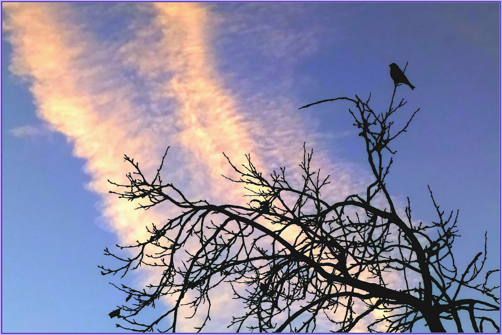 Guten Morgen Winter Normalzeit Foto Bild Sonnenaufgänge Himmel