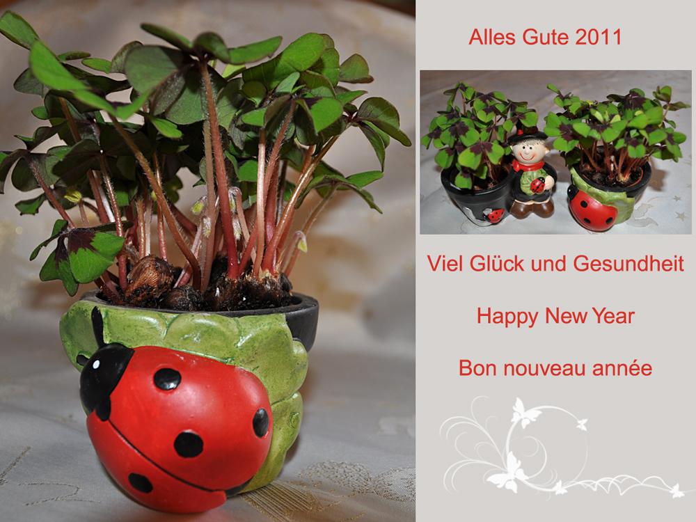 Guten Rutsch ins Neue Jahr 2011