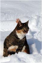 Gymnastik im Schnee