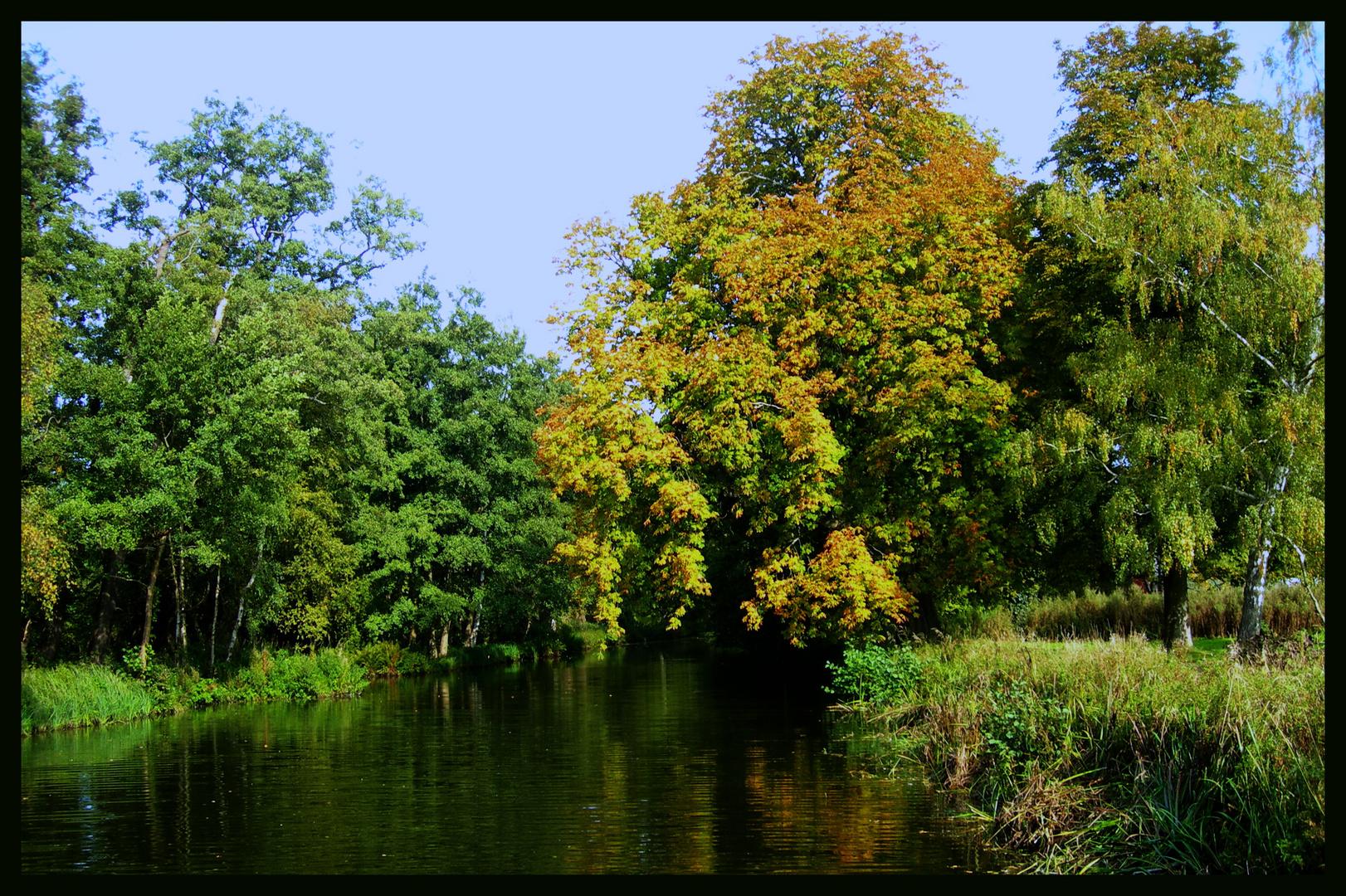 Ha llegado el otoño