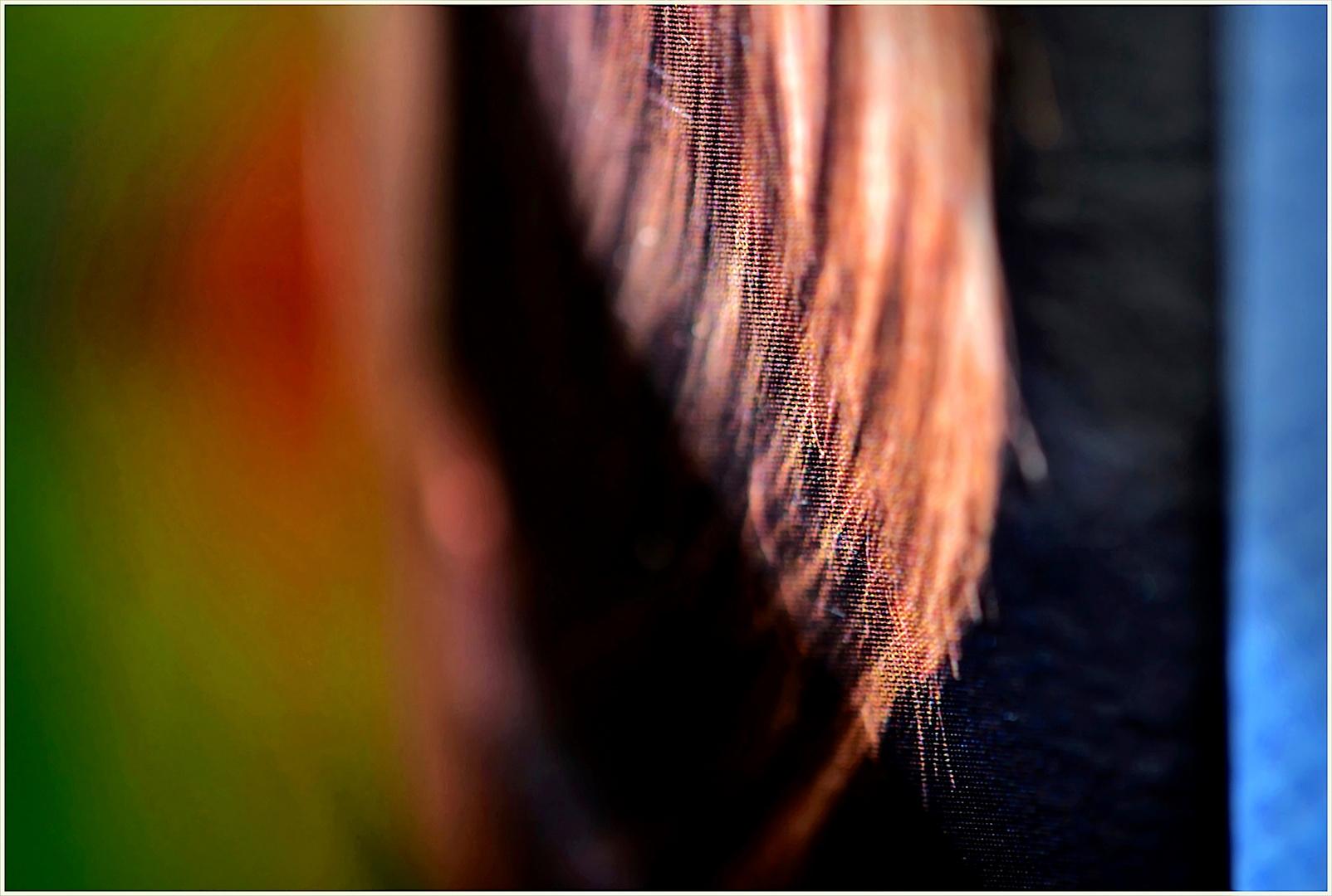 Haar - Farbe