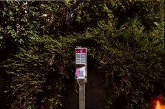 habe ein communication breakdown outdoor revival