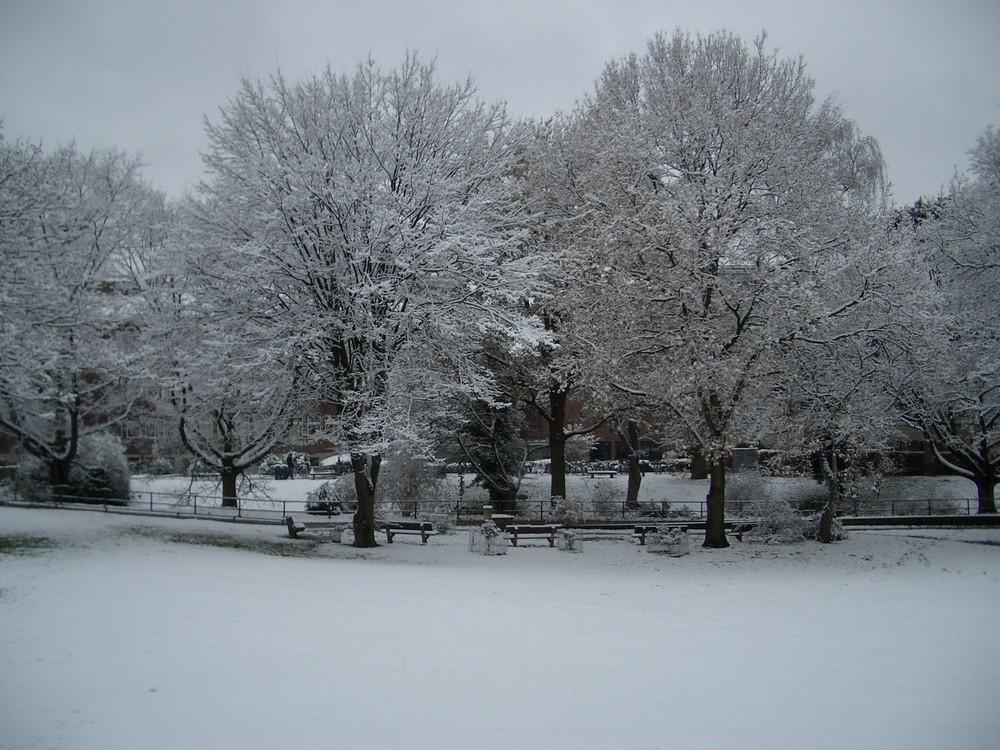 Hach, auch einmal wieder Schnee im guten alten Münster!