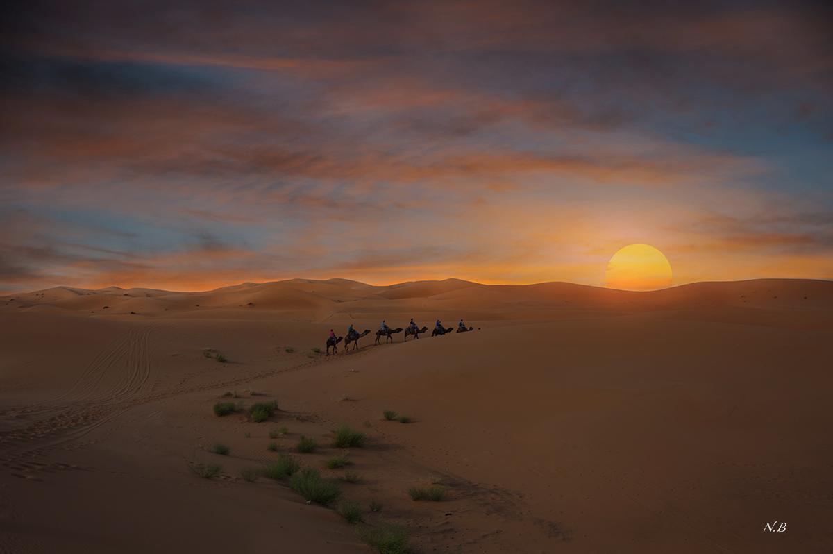 Hacia el sol del desierto