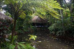 [ Hacienda La Isla ]