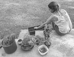 Haciendo jardinería