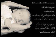 Hände, die dich tragen......