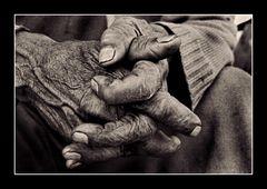 Hände wie alte Olivenbäume...