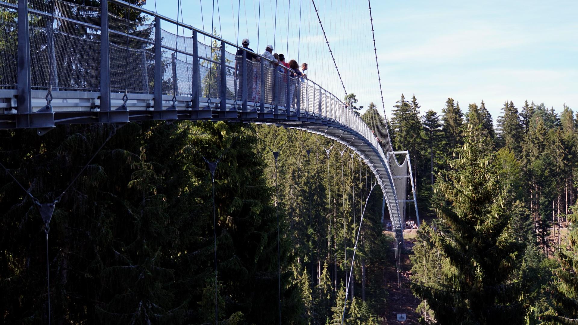 Hängebrücke Bad Wildbad