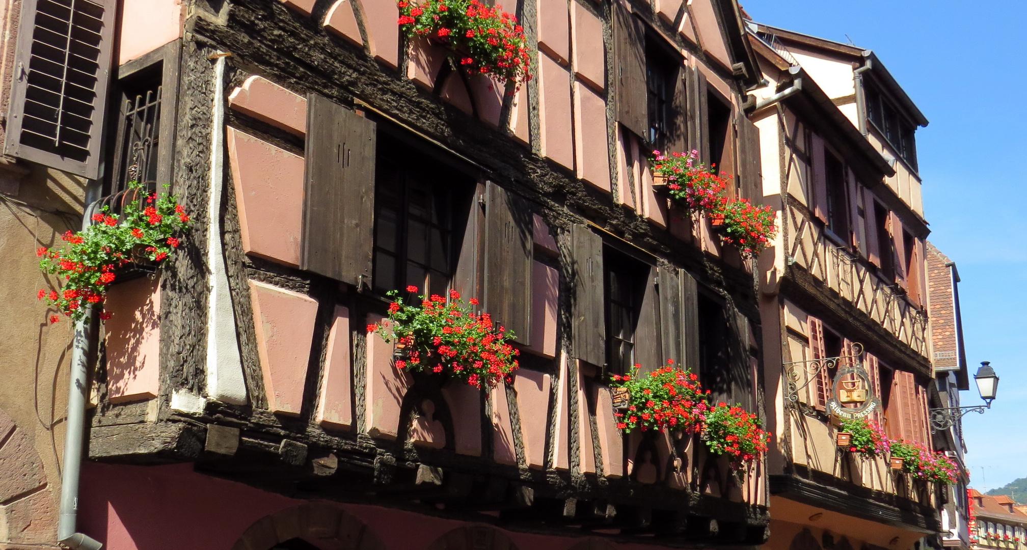 Häuser in Ribeauville, Elsass