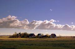 Häusergruppe auf Hiddensee