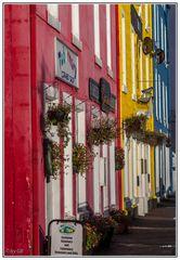 Häuserzeile in Tobermory