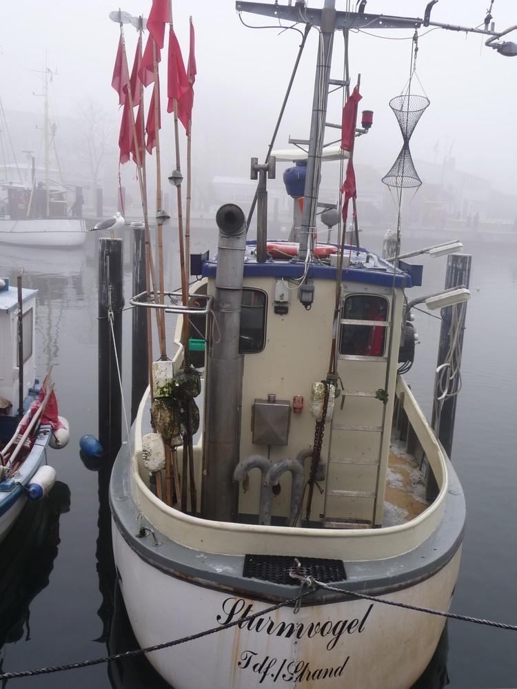 Hafen Fischkutter