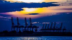 Hafen Hamburg / 2013 / 4