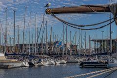 Hafen IX - Barcelona