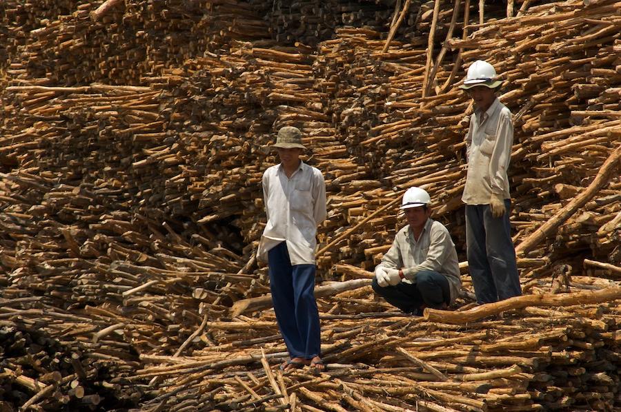 Hafenarbeiter am Mekong (1)