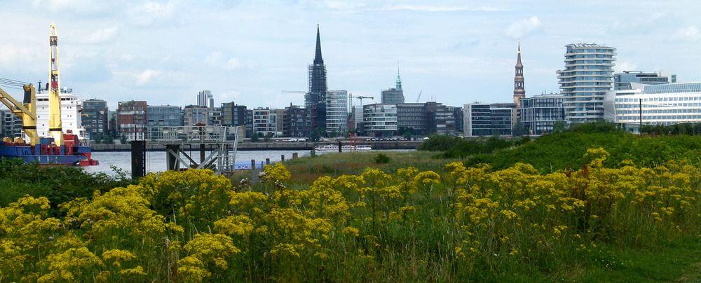 Hafencity mit Gelb:-))
