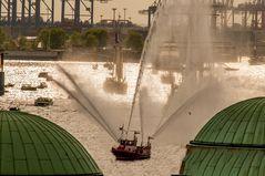 Hafengeburtstag 2015 Bild 3