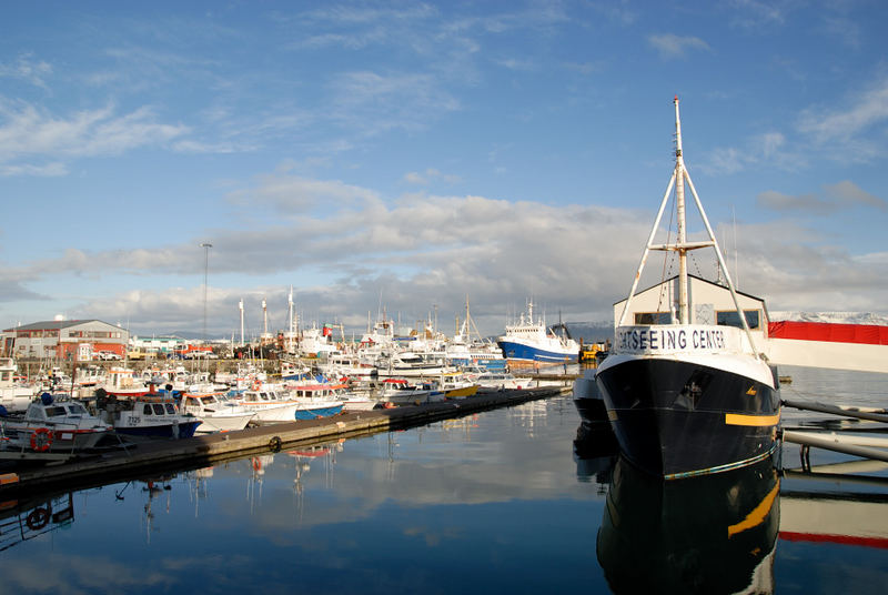 Hafenidylle in Reykjavik