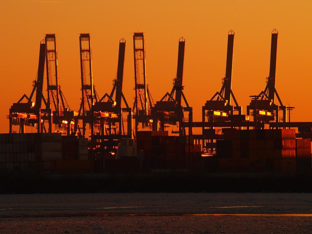 Hafenkräne im Winterlicht