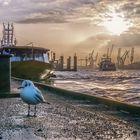 Hafenperspektiven 161.0
