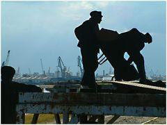 Hafensafari - Schattenbilder