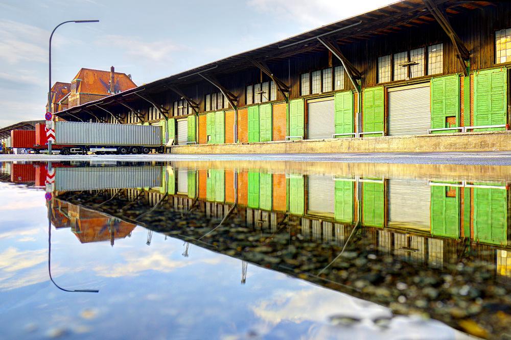 Hafenschauer