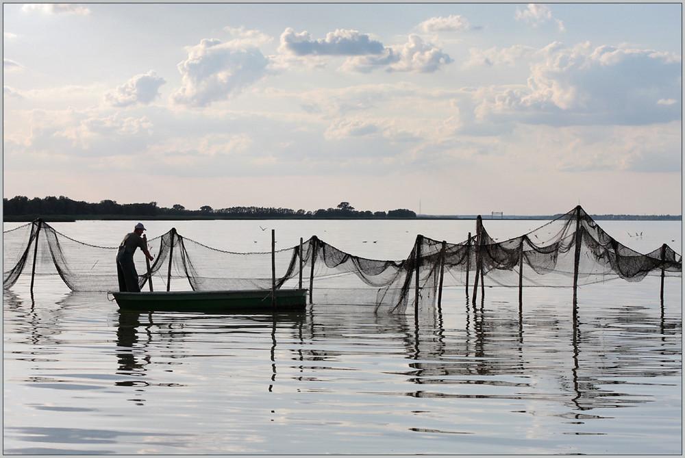Haff-Fischerei