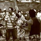 Hahnenkampf auf Bali