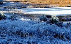 Halbgefrorenes (halffrozen)