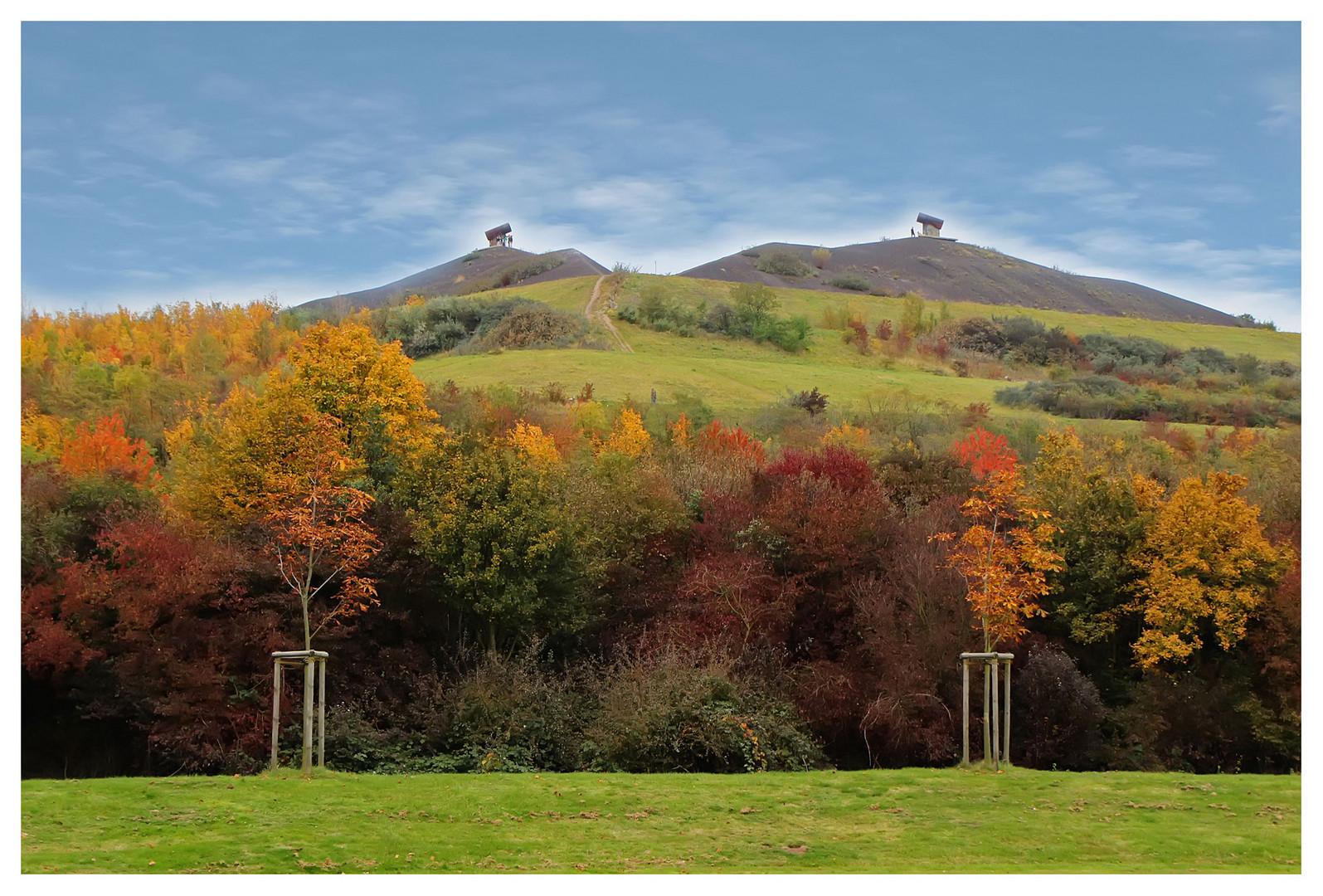Halde Rungenberg im Herbst