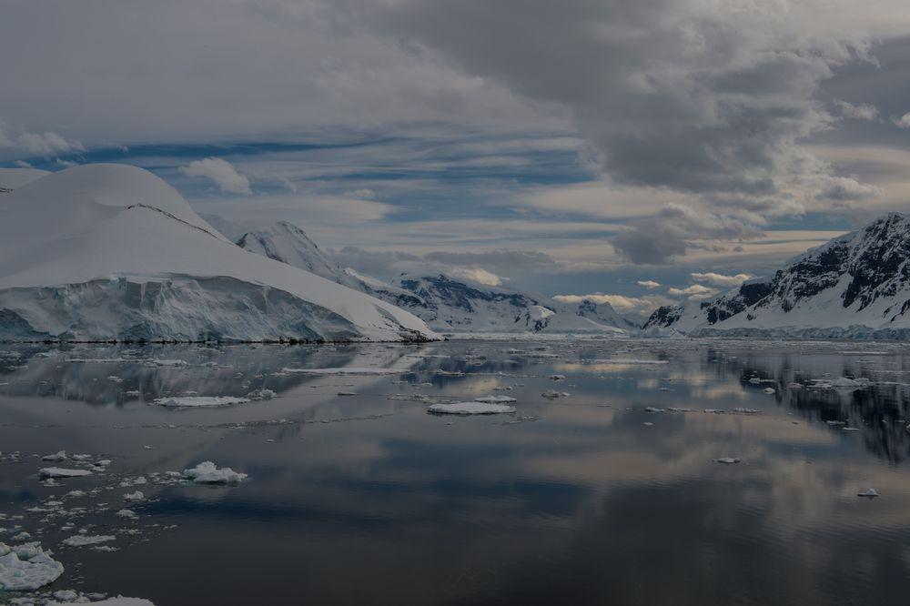 Half Moon Bay, Antarktis  DSC_0623
