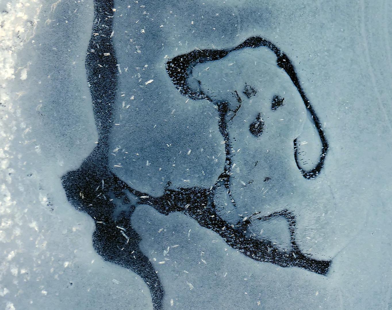Hallo, hallo: Der Winter lässt euch grüssen!  -  Bonjour, l'hiver vous salue!