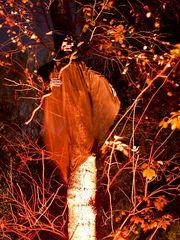 Halloween Anholter schweiz 2012 - 12
