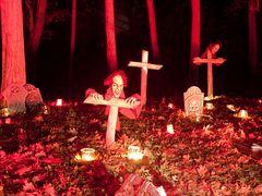 Halloween Anholter schweiz 2012 - 7