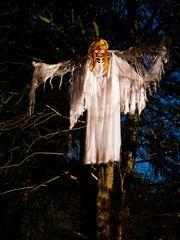 Halloween Anholter schweiz 2012 - 9