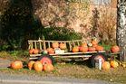 Halloween auf rädern